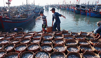 Ministry Proposes Plan For Sustainable Use Of Vietnam's Sea